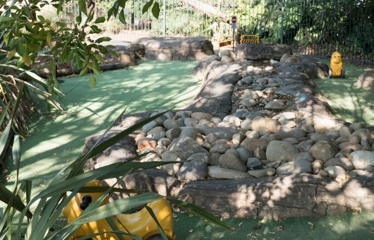 Our natural areas include a creek and landscaped gardens